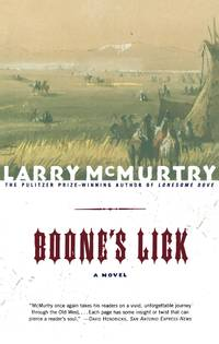 image of Boone's Lick a Novel