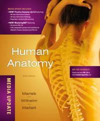 Human Anatomy Media Update