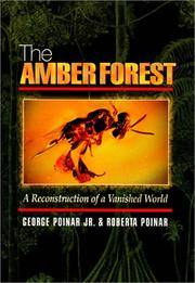 THE AMBER FOREST. A Reconstruction Of A Vanished World.