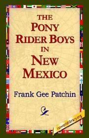 The Pony Rider Boys In New Mexico