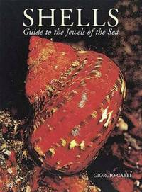 Shells: Guide to the Jewels of the Sea