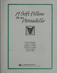 Soft Pillow for an Armadillo Level 3-1