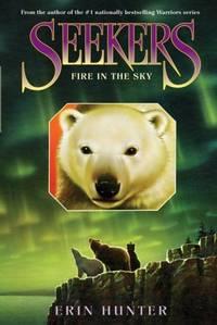 Seekers : Fire in the Sky