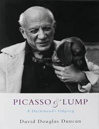Picasso  Lump