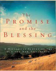 The Promise and the Blessing: A Historical Survey of the Old and New Testaments by Harbin, Michael A
