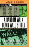 image of A Random Walk Down Wall Street: The Time-Tested Strategy for Succesful Investing