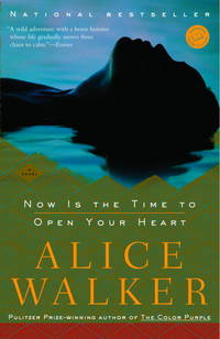 Now Is the Time to Open Your Heart: A Novel