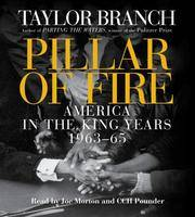 image of Pillar of Fire: America in the King Year