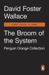 image of BROOM OF THE SYSTEM