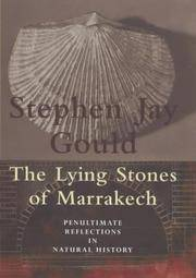 image of The Lying Stones Of Marrakech