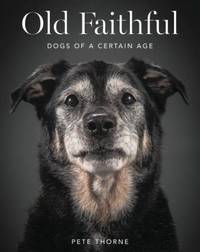 Old Faithful: Dogs of a Certain Age by Thorne, Pete - 2015-10-27