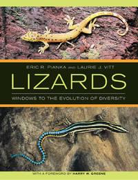 Lizards:  Windows to the Evolution of Diversity by Pianka, Eric P. & Laurie J. Vitt - 2006