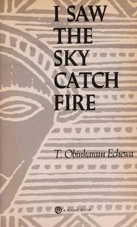I Saw the Sky Catch Fire (Plume Contemporary Fiction)