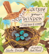 Outside Your Window: A First Book of Nature by Davies, Nicola