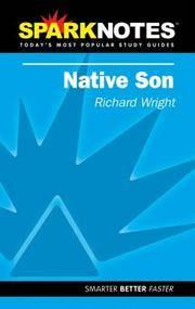 Spark Notes Native Son