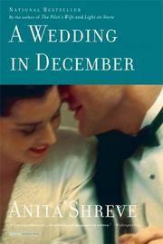 A wedding in December a novel