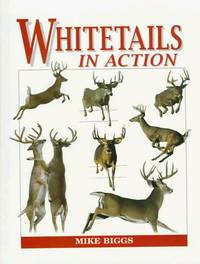 WHITETAILS IN ACTION