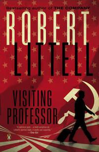 image of The Visiting Professor: A Novel