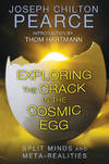 image of EXPLORING THE CRACK IN THE COSMIC EGG