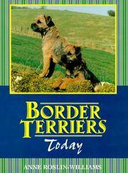 image of Border Terriers Today