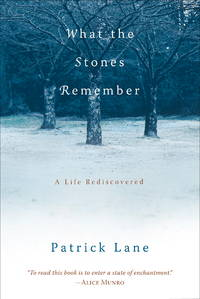 What the Stones Remember a Life Rediscovered