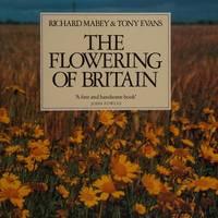 Flowering of Britain