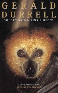 Golden Bats  Pink Pigeons