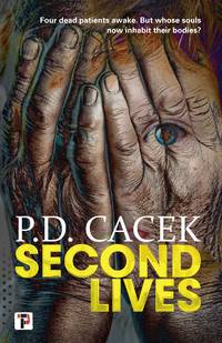 Second Lives (Fiction Without Frontiers)
