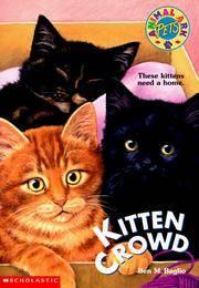 Kitten Crowd