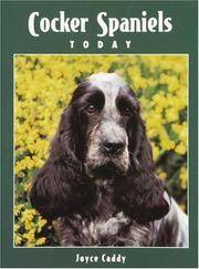 Cocker Spaniels Today
