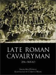 Late Roman Cavalryman