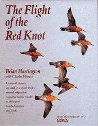 THE FLIGHT OF THE RED KNOT