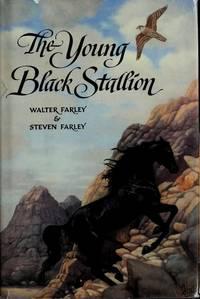 THE YOUNG BLACK STALLION (Black Stallion Series)
