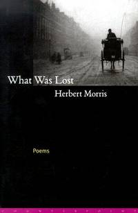 What Was Lost  Poems