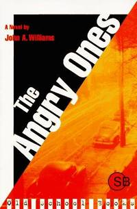 image of The Angry Ones: A Novel