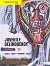 image of Cengage Advantage Books: Juvenile Delinquency