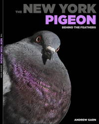 The New York Pigeon: Behind the Feathers by  Andrew ;Emily S. Rueb; Rita McMahon Garn - 1st - 2018 - from JWMah and Biblio.com