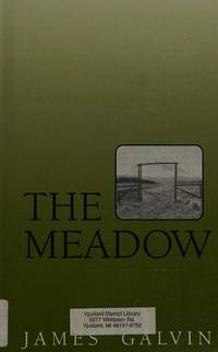 image of The Meadow (Curley Large Print Books)