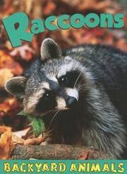 raccoons - backyard animals