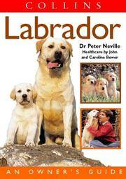 Labrador: An Owner's Guide