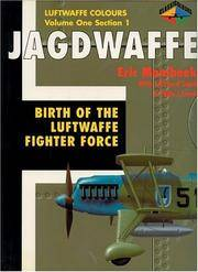 Jagdwaffe: Birth of the Luftwaffe Fighter Force (Classicolours)