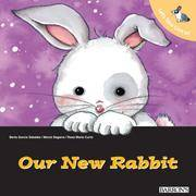 Let's Take Care of Our New Rabbit (Let's Take Care of Books)