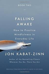 Falling Awake: How to Practice Mindfulness in Everyday Life