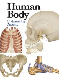 image of Human Body: Understanding Anatomy (Mini Encylopedia)