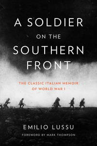 A Soldier on  the Southern Front: The Classic Italian Memoir of World War I