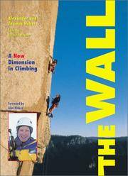 The Wall : A New Dimension in Climbing