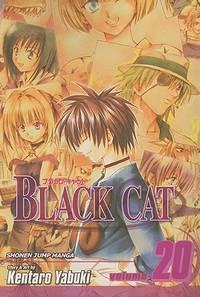 Black Cat Vol 20