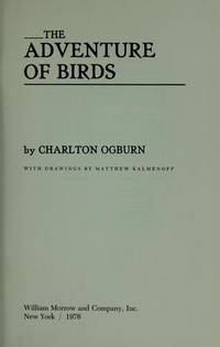 The Adventure Of Birds