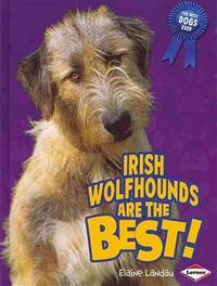 Irish Wolfhounds Are the Best! (The Best Dogs Ever)