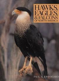 Hawks, Eagles, and Falcons of North America